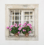 Square window with potted flowers. Square window decorated with potted flowers. Building facade Stock Photo