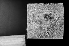Square wooden cut. Black and white Stock Photography