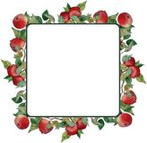 Square wreath red apples leaves branches ornament stock illustration