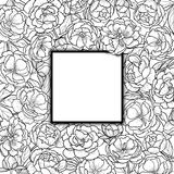 Squared Frame with Peonies Royalty Free Stock Image