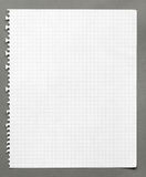 Squared sheet of paper Stock Photos