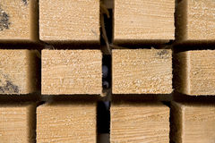 Squared timber Stock Image