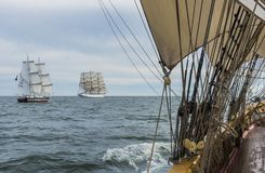 Squareriggers racing. During The Tall Ships´ Races 2017. Baltic sea, Europe. British Brig TS Royalist and Polish fullrigger Dar Mlodziezy and forward the Dutch Royalty Free Stock Photo