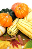 Squash Royalty Free Stock Photo