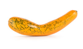 Squash Royalty Free Stock Image