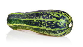Squash Stock Image
