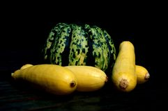 Squash. A multicolored acorn squash surrounded by yellow summer squash stock photo