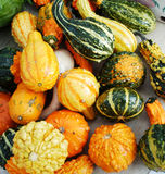 Squash. For sale at a local market Stock Images