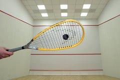 Squash Stock Images