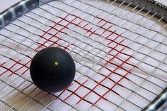Squash ball. Black squash ball lying on the strings of squash racket royalty free stock photography