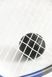 Squash ball against strings of racket Stock Photo
