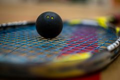 Squash Ball. In the middle of the strings stock images