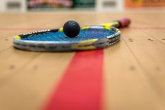 Squash Ball. In the middle of the strings stock photos