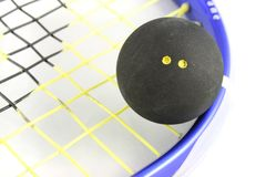 Squash Ball on Racket. Close up of a Squash Ball on a Squash Racket Royalty Free Stock Photography