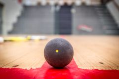 Squash ball royalty free stock photography