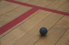 Squash ball on the wood floor. In squash room royalty free stock photography