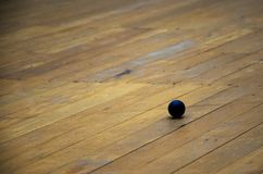 Squash ball on the wood floor. In squash room stock image