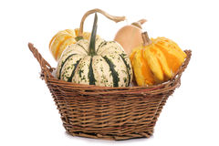 Squash in a basket Stock Photos