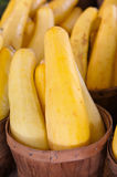 Squash in a basket Stock Images
