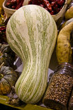 Squash and Beans Royalty Free Stock Photography