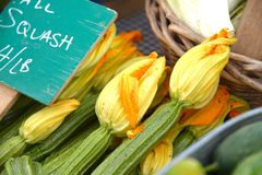 Squash Blossoms at an American Farmers Market Stand. Squash blossoms attached to zucchini royalty free stock photography