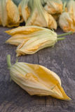 Squash blossoms or pumpkin flowers Stock Images
