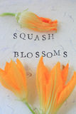 Squash blossoms and words Stock Image