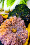 Squash and Bok Choy. Vegetables at the farmer`s market at the Saturday morning farmer`s marketat the Community College, Puhi, Kauai, Hawaii Royalty Free Stock Images