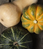 Squash Collection Royalty Free Stock Photo