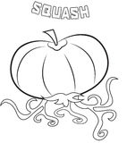 Squash coloring page Royalty Free Stock Photos