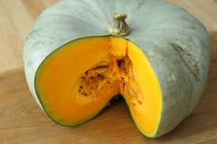 Squash. Royalty Free Stock Image