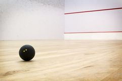 Squash Court Stock Images