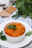 Squash dip. (puree) with cilantro Royalty Free Stock Photos