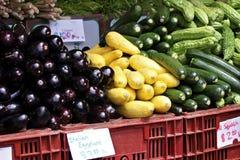 Squash and Eggplant Stock Photography