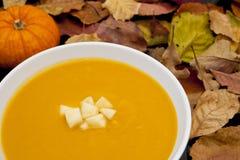 squash för soup för äpplebutternut ljust rödbrun Royaltyfria Bilder