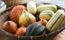 Squash at the Farmer's Market. Ripe produce at a Farmer's Market Stock Images