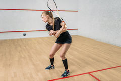 Squash game training, female player with racket. In hands, indoor sport club on background Royalty Free Stock Photography