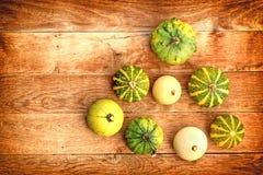 Squash, gourd, pumpkin Stock Image