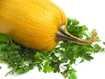 Squash and greens. Yellow summer squash and greens on white background stock image