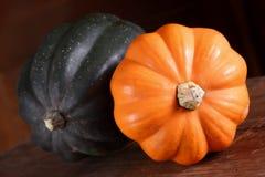Squash Harvest Royalty Free Stock Image
