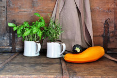 Squash and herbs Stock Image