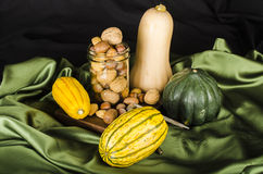 Squash and Nuts Royalty Free Stock Photo