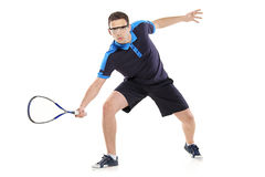 Squash player Royalty Free Stock Image