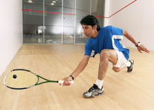 Squash Player Royalty Free Stock Photography