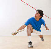 Squash Player Royalty Free Stock Photos