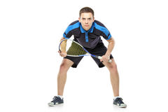 Squash player preparing for service Royalty Free Stock Images