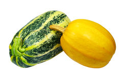 Squash and pumpkin Royalty Free Stock Photography