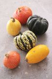 Squash pumpkin selection Royalty Free Stock Image