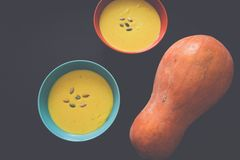 Squash pumpkin and soup in bowl with seeds Stock Photography