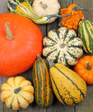 Squash and Pumpkins Stock Photo